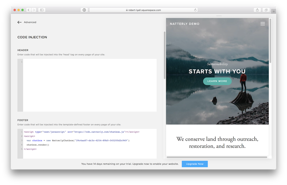 A screenshot of the Squarespace interface with the embed code pasted in the footer section